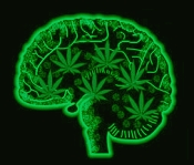 psychological effects of marijuana