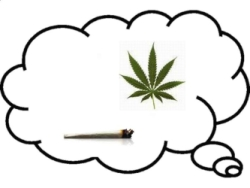 is marijuana addictive