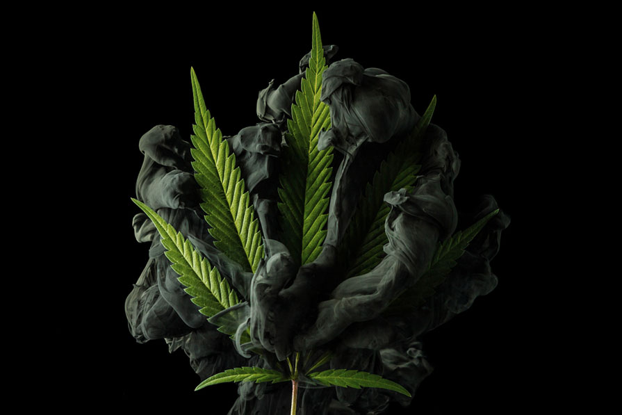 cannabis-artwork