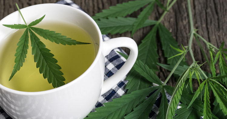how-to-make-weed-tea