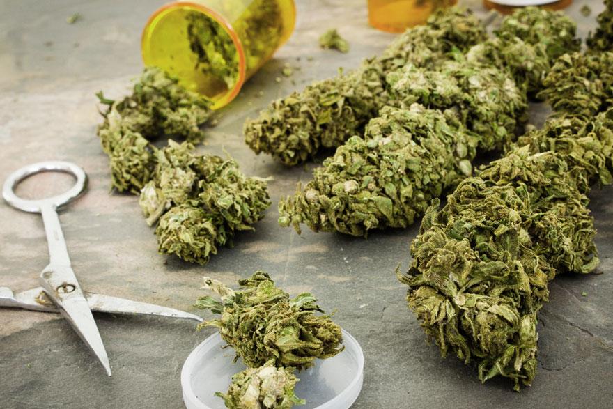 medical-marijuana-laws-hawaii