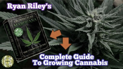 ryan-riley-growing-cannabis-guide-review